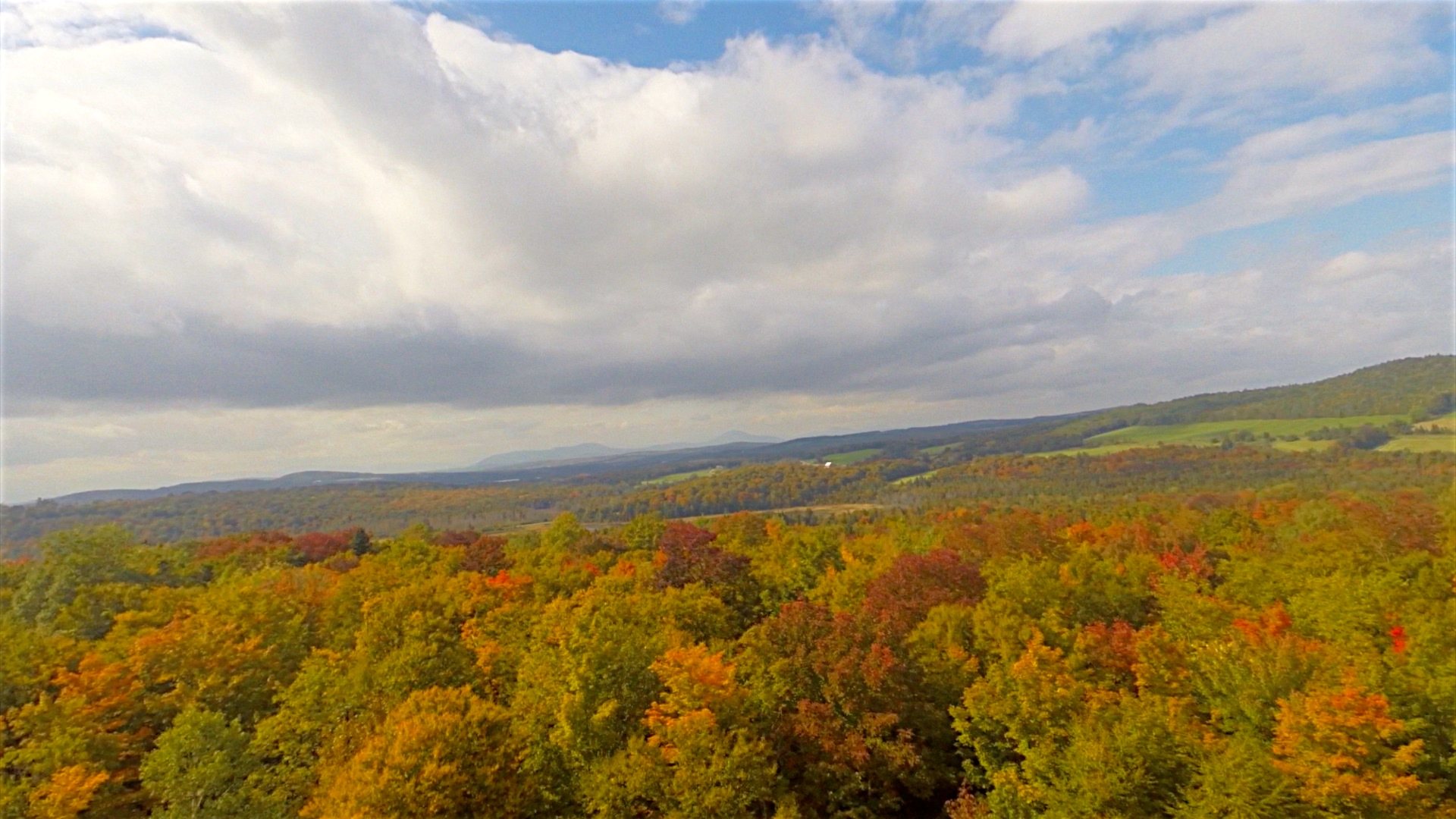 Foliage Color around Morgan, September 23rd, 2014