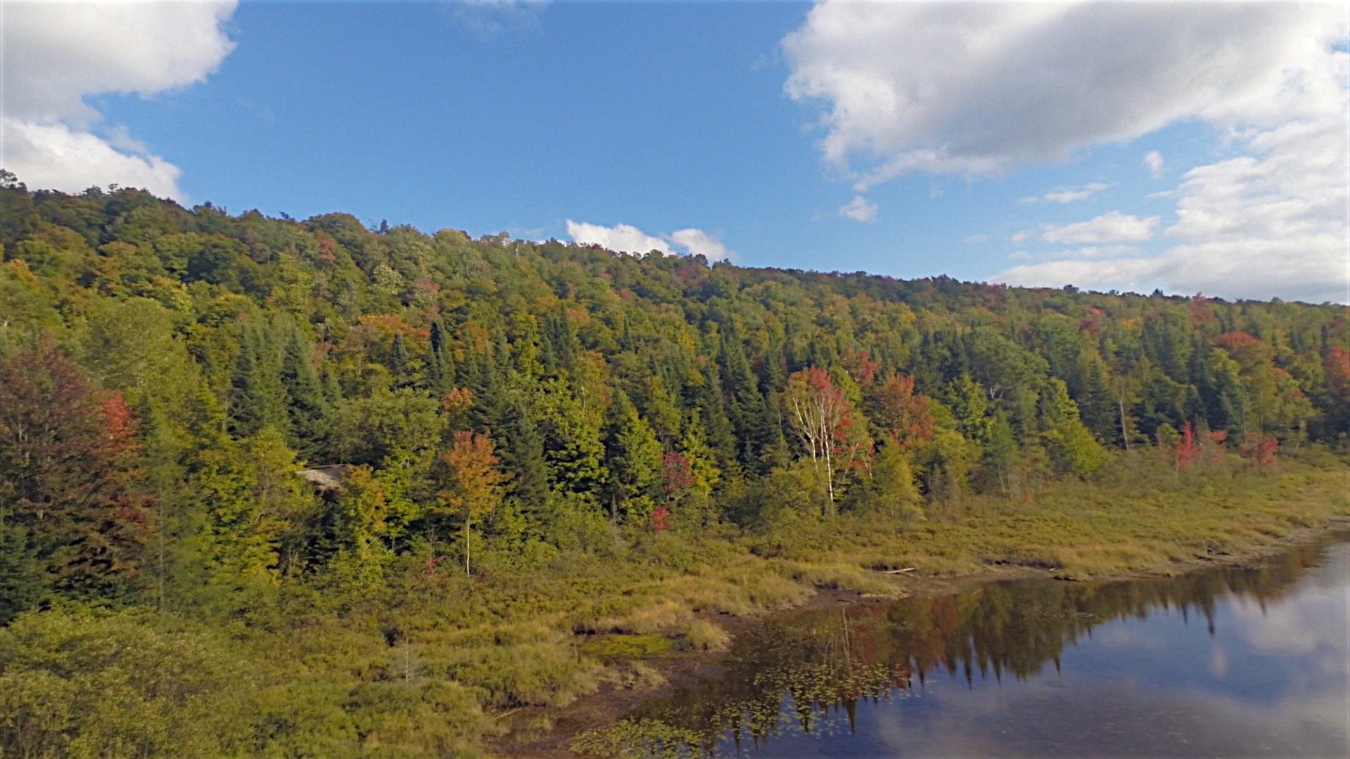 Northeastern Vermont Foliage Aerial Scenes - September 18th