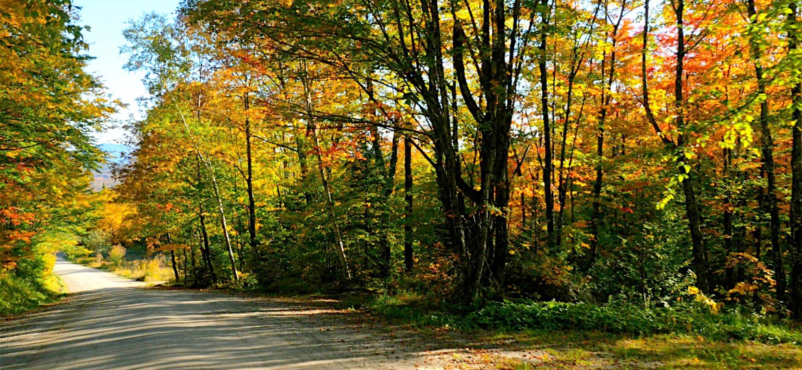 High Color in Vermont's Northeast Kingdom
