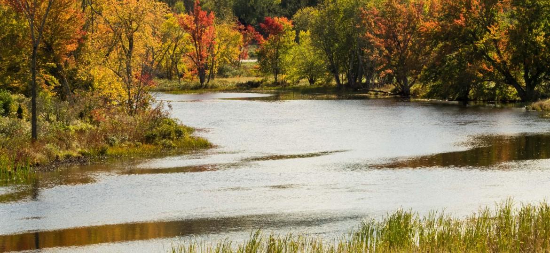 Peak foliage color in the Kingdom!